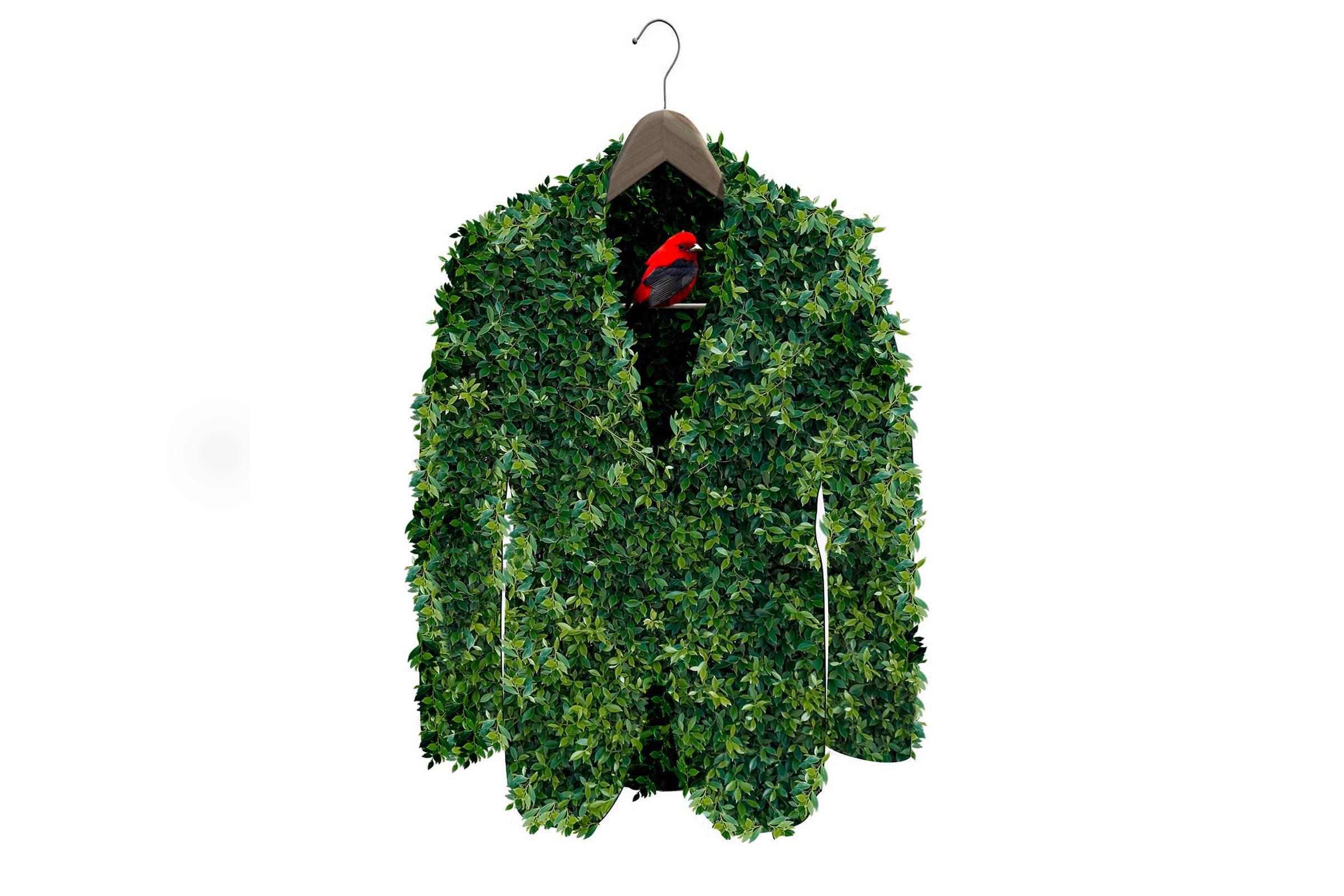 Falemos de sustentabilidade na Moda